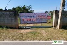For Sale Land 1,892 sqm in Phan, Chiang Rai, Thailand