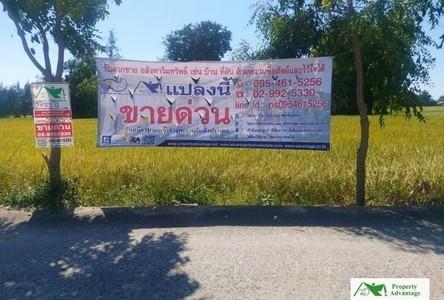 For Sale Land 3,200 sqm in Nong Khae, Saraburi, Thailand