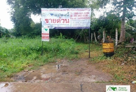For Sale Land 420 sqm in Nong Khae, Saraburi, Thailand