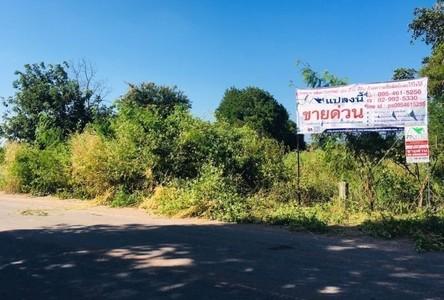 ขาย ที่ดิน 15,020 ตรม. เมืองชัยภูมิ ชัยภูมิ
