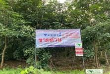 For Sale Land 64,556 sqm in Nong Khai, Northeast, Thailand
