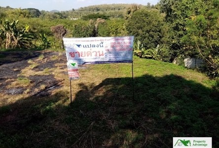 For Sale Land 1,525 sqm in Mueang Phayao, Phayao, Thailand