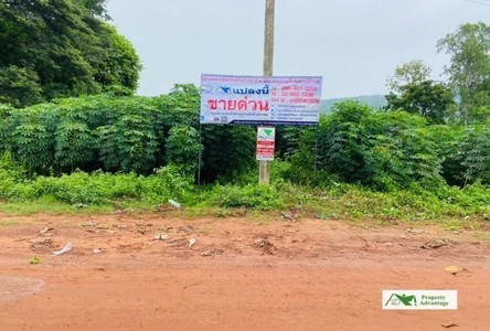 For Sale Land in Mueang Phitsanulok, Phitsanulok, Thailand