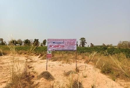 For Sale Land 23,000 sqm in Yang Talat, Kalasin, Thailand