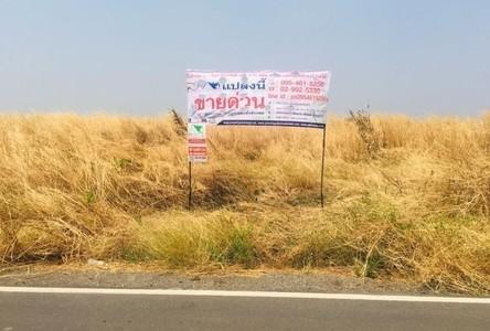 For Sale Land 52,024 sqm in Wang Muang, Saraburi, Thailand