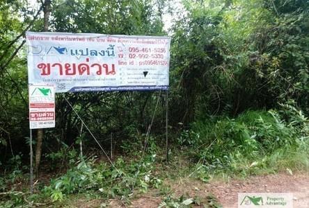 For Sale Land 20,624 sqm in Ban Phaeng, Nakhon Phanom, Thailand