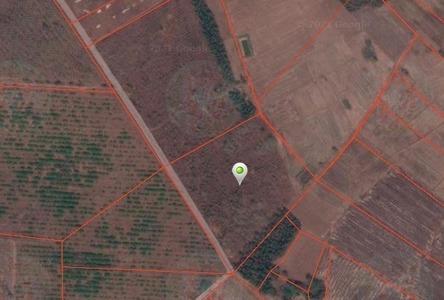 For Sale Land 28,672 sqm in Chon Daen, Phetchabun, Thailand