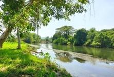 For Sale Land 73,600 sqm in Mueang Kanchanaburi, Kanchanaburi, Thailand