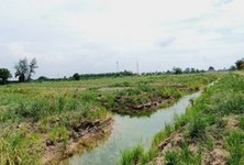 For Rent Land 64,480 sqm in Nong Suea, Pathum Thani, Thailand