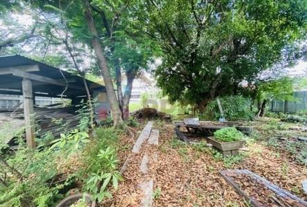 Продажа: Земельный участок 1,280 кв.м. в районе Phra Khanong, Bangkok, Таиланд