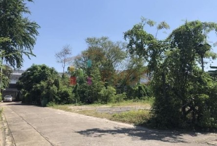 Продажа: Земельный участок 396 кв.м. в районе Wang Thonglang, Bangkok, Таиланд