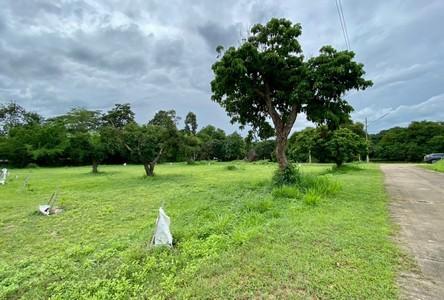For Sale Land 1,868 sqm in San Sai, Chiang Mai, Thailand