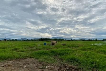 For Sale Land 4,648 sqm in San Kamphaeng, Chiang Mai, Thailand