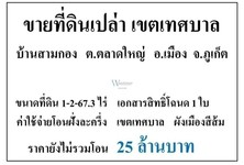 For Sale Land 2,669 sqm in Mueang Phuket, Phuket, Thailand
