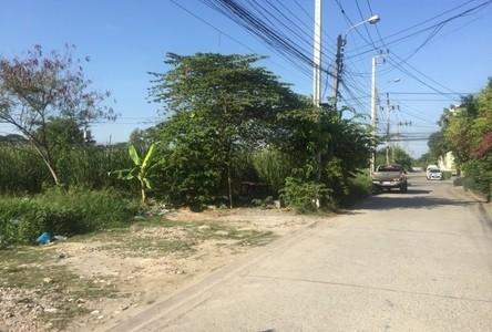 For Rent Land 1,632 sqm in Prawet, Bangkok, Thailand