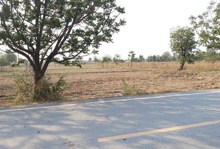 For Sale Land in Don Chedi, Suphan Buri, Thailand