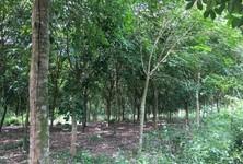 For Sale Land 160,000 sqm in Sanam Chai Khet, Chachoengsao, Thailand