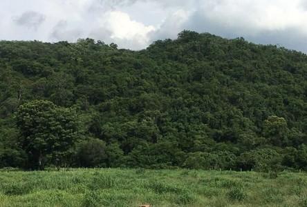 For Sale Land 12,800 sqm in Mueang Nakhon Ratchasima, Nakhon Ratchasima, Thailand