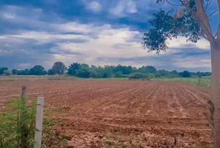 For Sale Land 8,000 sqm in Sikhio, Nakhon Ratchasima, Thailand