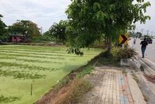 Продажа: Земельный участок 31,206 кв.м. в районе Bang Phli, Samut Prakan, Таиланд