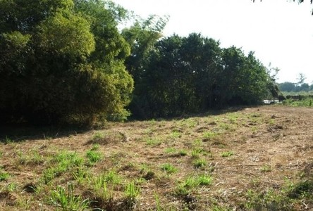 For Sale Land 2,720 sqm in San Pa Tong, Chiang Mai, Thailand