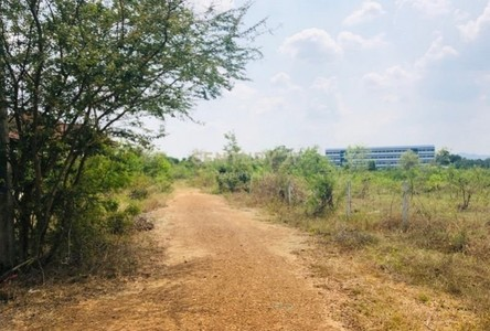 For Sale Land 8,000 sqm in Chom Bueng, Ratchaburi, Thailand