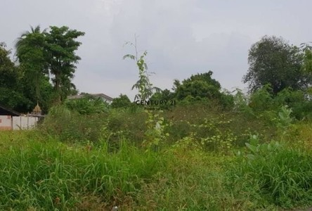 For Sale Land 4,800 sqm in Mueang Nonthaburi, Nonthaburi, Thailand