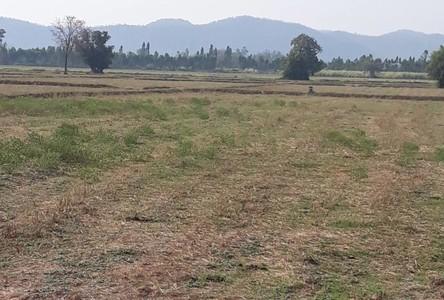 ขาย ที่ดิน 800 ตรม. เมืองสุพรรณบุรี สุพรรณบุรี