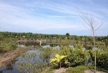 ขาย ที่ดิน 228,800 ตรม. ท้ายเหมือง พังงา