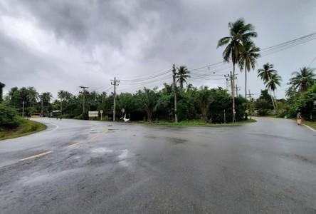 For Sale Land 3,200 sqm in Nuea Khlong, Krabi, Thailand