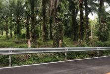 ขาย ที่ดิน 16,000 ตรม. เมืองพังงา พังงา
