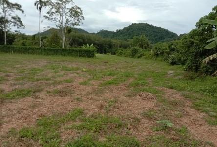 ขาย ที่ดิน 15,480 ตรม. ท้ายเหมือง พังงา