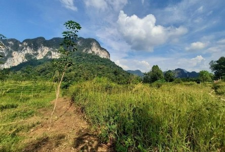 For Sale Land 26,000 sqm in Mueang Krabi, Krabi, Thailand