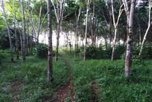 ขาย ที่ดิน 20,800 ตรม. ท้ายเหมือง พังงา