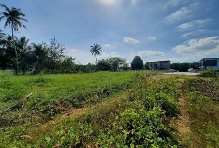 For Sale Land 384 sqm in Mueang Krabi, Krabi, Thailand