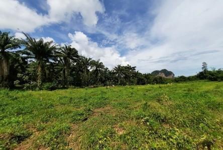 For Sale Land 1,604 sqm in Mueang Krabi, Krabi, Thailand