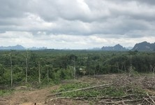 For Sale Land 9,600 sqm in Mueang Krabi, Krabi, Thailand