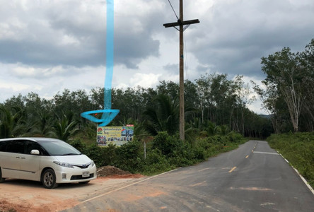For Sale Land 14.5 rai in Hat Yai, Songkhla, Thailand