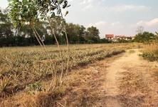 ขาย ที่ดิน ศรีราชา ชลบุรี