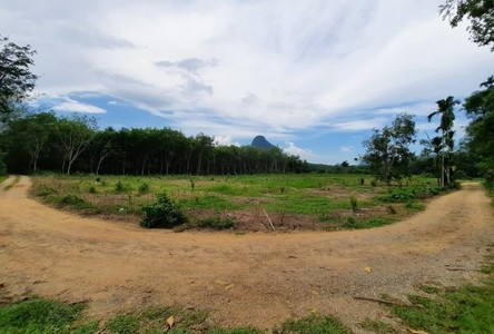 For Sale Land 8,812 sqm in Mueang Krabi, Krabi, Thailand