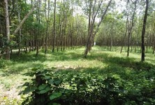 For Sale Land 144,000 sqm in Takua Pa, Phang Nga, Thailand