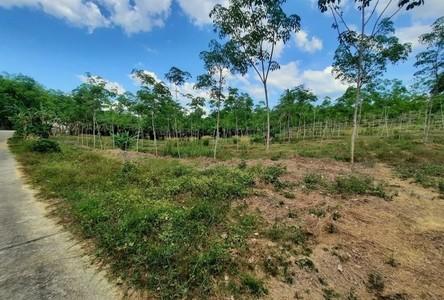 ขาย ที่ดิน 41,120 ตรม. ตะกั่วป่า พังงา