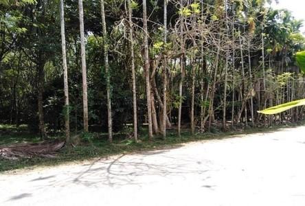 ขาย ที่ดิน 25,600 ตรม. ท้ายเหมือง พังงา
