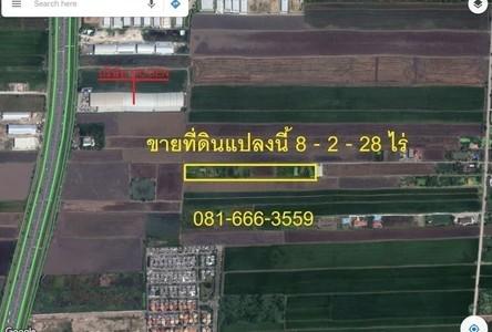 For Sale Land 1,164 sqm in Lam Luk Ka, Pathum Thani, Thailand