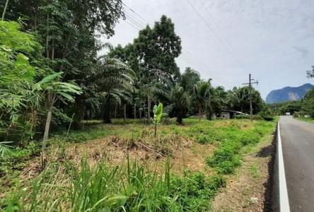 For Sale Land 2,812 sqm in Mueang Krabi, Krabi, Thailand