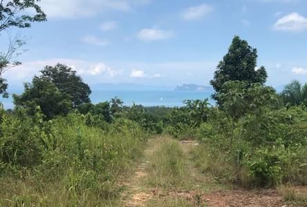 For Sale Land 24,400 sqm in Mueang Krabi, Krabi, Thailand