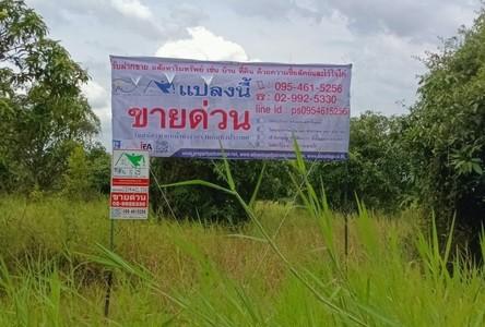For Sale Land in Mueang Nakhon Nayok, Nakhon Nayok, Thailand