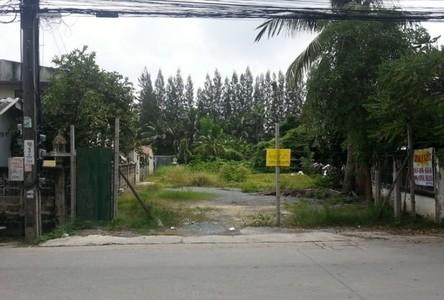 ขาย ที่ดิน 564 ตรม. บางกรวย นนทบุรี