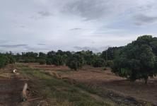 For Sale Land 125 rai in Ban Hong, Lamphun, Thailand