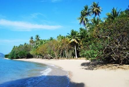 ขาย ที่ดิน 32,000 ตรม. เกาะยาว พังงา